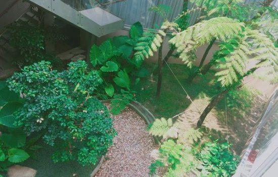 在綠意環繞中體驗美容spa